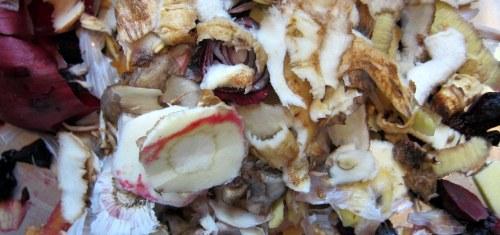 MS-kost, rødbedesuppe med rodfrugter, hvide bønner og frisk koriander